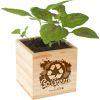 Go Green Wooden Cube Planter - 1 planter cube
