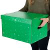 Corrugated Storage Box – Fizz! - 1 box
