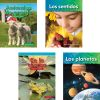 STEM Spanish 10-Book Set - Grade K