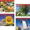 Watch It Grow - 11-Book Set