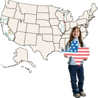USA Jumbo Collage Map - 53 pieces.