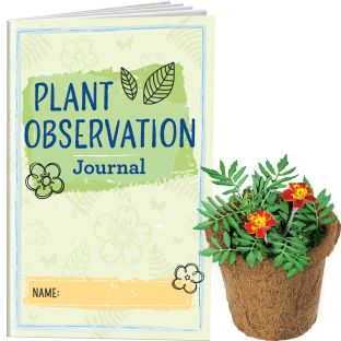 Plant Observation Journals And Wonder Soil Kit