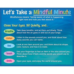 Let's Take A Mindful Minute Poster - 1 poster