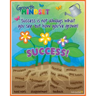 Growth Mindset SUCCESS! Poster