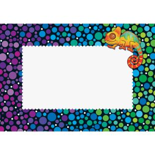 Chameleon Book Pouch Labels - Set Of 12