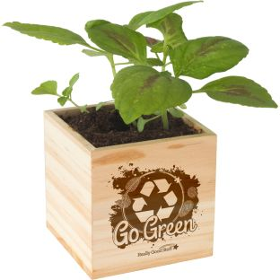 Go Green Wooden Cube Planter
