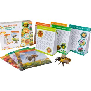 Project-Based Learning Kit  Honeybees - 1 multi-item kit