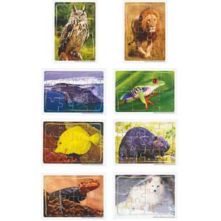 Excellerations® Animals in Their Biomes Puzzles - Set of 8