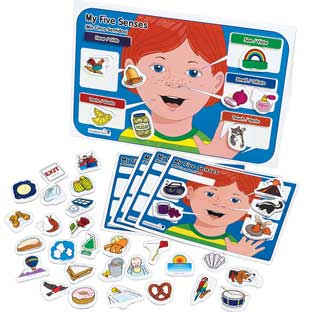 Excellerations® My 5 Senses Magnet Activity Set