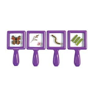 Environments Toddler Specimen Viewers Set of 4