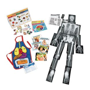 Excellerations® Science Kit – Health and Human Body