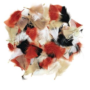 Natural Feathers, Natural Colors, 3oz,