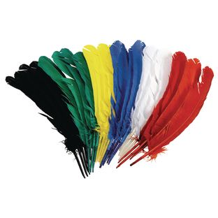 """Colorations[r] Quill Feathers, 12"""" - Set of 24"""