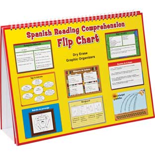 Spanish Reading Comprehension Flip Chart