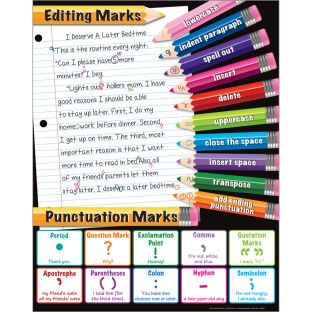 Editing Marks and Punctuation Poster - 1 poster