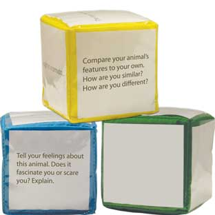 Differentiated Instruction Cubes - 3 cubes