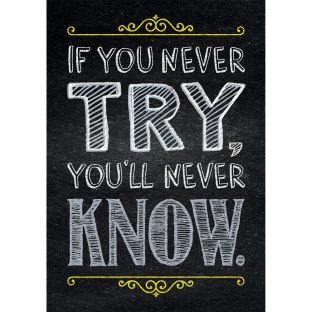 Inspire U Posters - If You Never Try...
