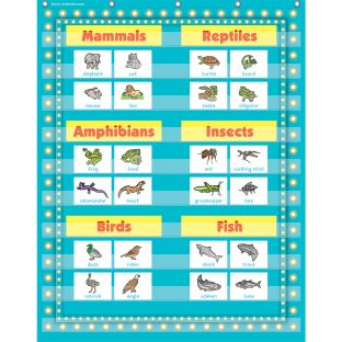 Marquee 10-Pocket Chart - Light Blue - 1 pocket chart