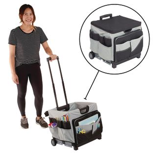 Universal Rolling Cart and Canvas Organizer - Black/Grey