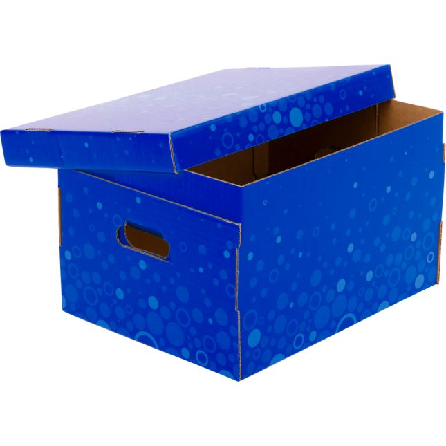 Corrugated Storage Box – Fizz! - Blue