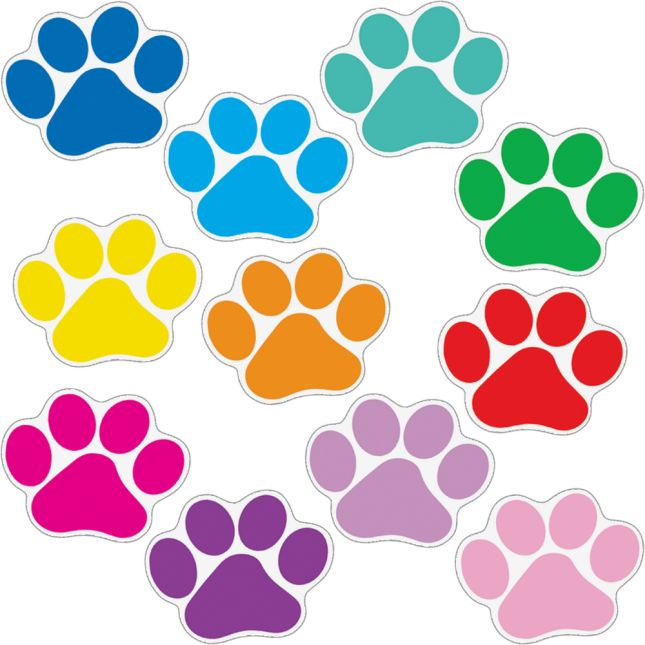 Paw Prints Classroom Kit - 1 multi-item kit