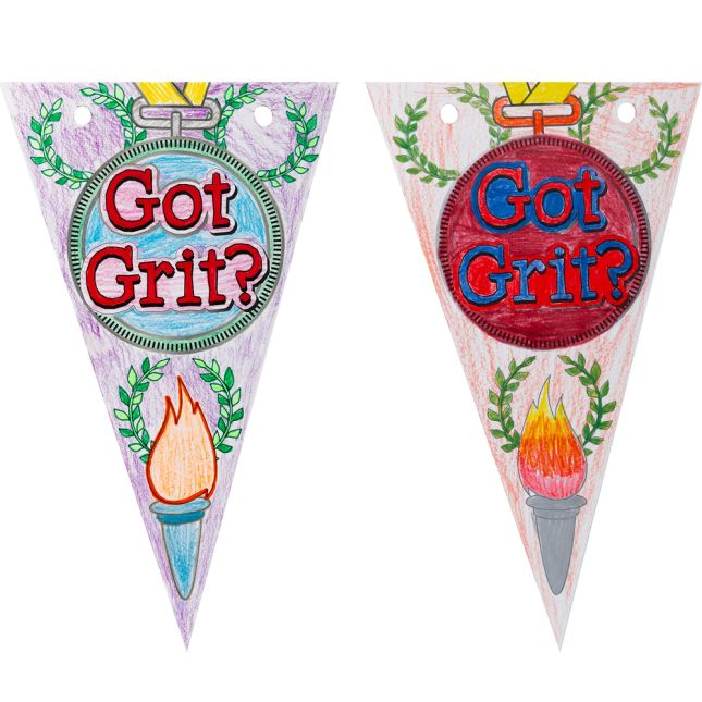 Ready-To-Decorate Got GRIT? Pennants  24 Pack