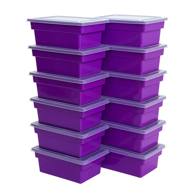 All Purpose Bins And Lids Set Of 12 Single Color   Purple