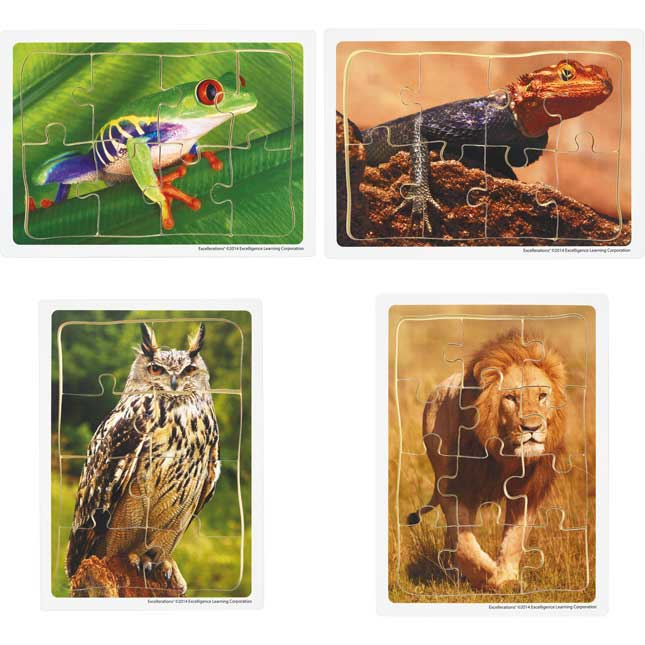 Excellerations Animals in Their Biomes Puzzles Set of 8