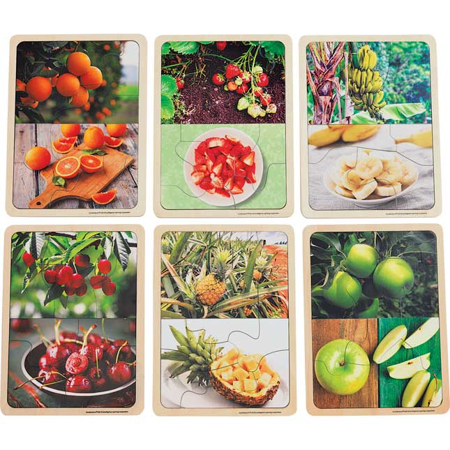Excellerations Fruit Photo Puzzles Set of 6