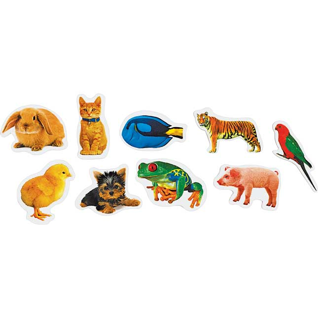 Colorations Real Photo Animal Foam Stickers 250 Pieces