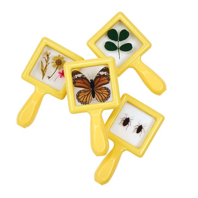 Environments earlySTEM Specimen Viewers Set of 4
