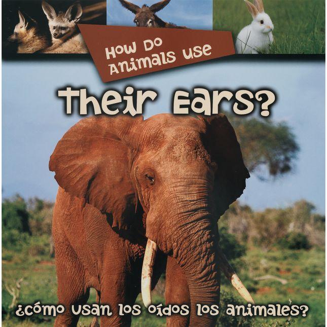 Animals Big Book Set of 6