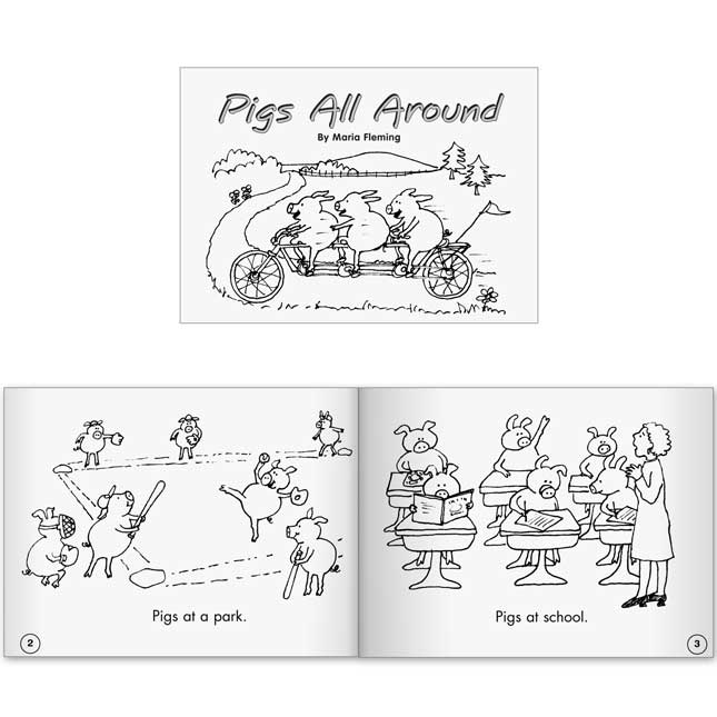 Little Leveled Readers Book Set - Set A