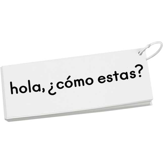 EZread™ Spanish High Frequency Word Phrase Flash Cards: Emergent