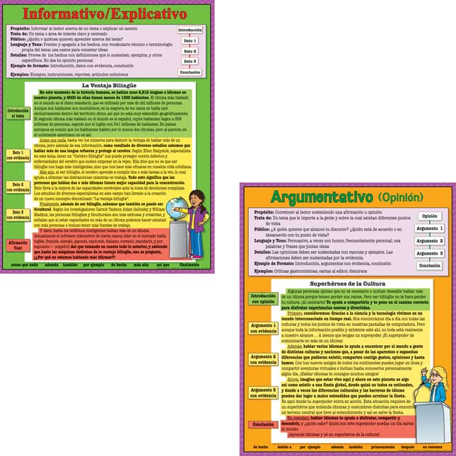Spanish Intermediate Writing Text Types 4-Poster Set