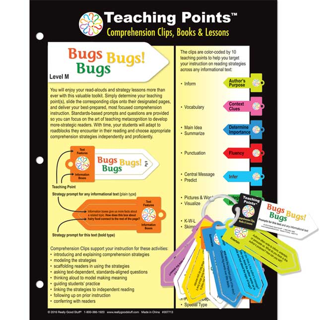 Teaching Points™: Clips and Trifold Lesson Plan - Bugs Bugs Bugs!