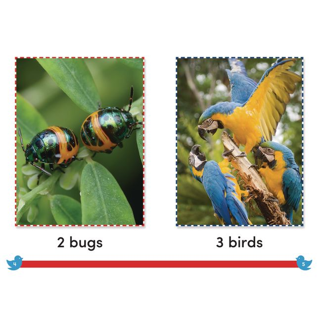Time for Kids® Informational Text - 30 Books - Grade K