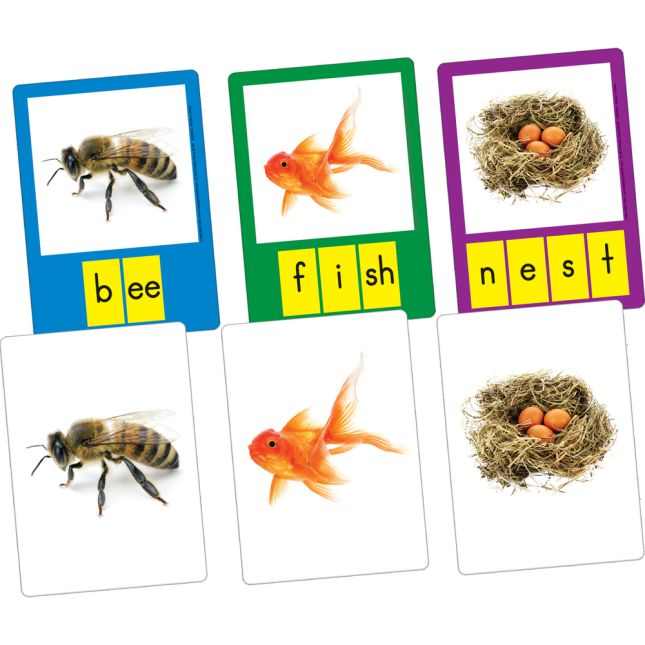 Small-Group Phoneme Photo Cards