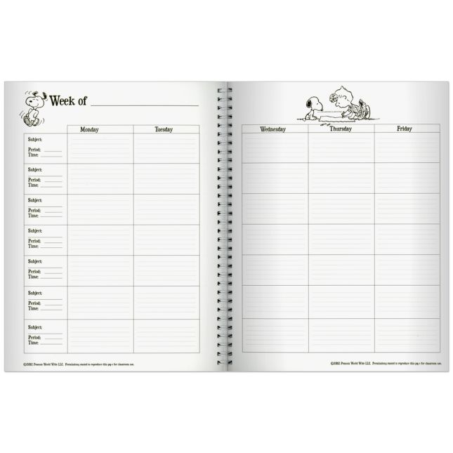Peanuts® Lesson Plan Book