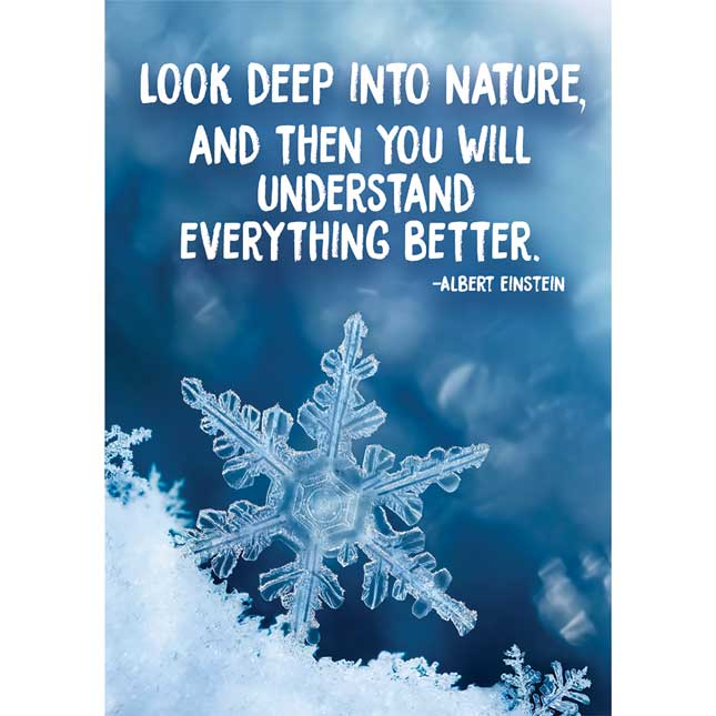 "Look Deep Into Nature 13"" X 19"" Poster"