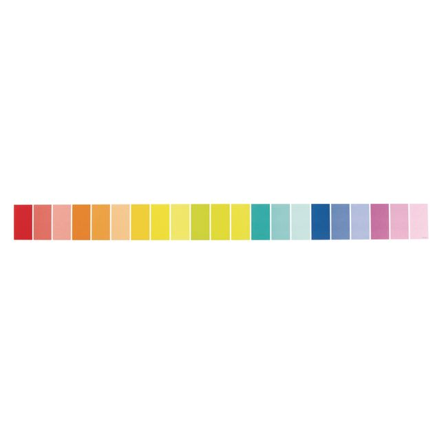 Painted Palette Rainbow Paint Chip Border Trim