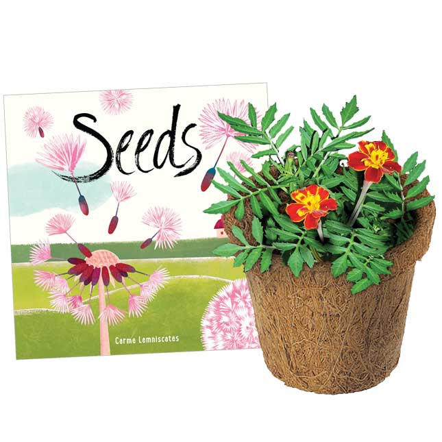 Seeds and Wonder Soil Classroom Gardening Kit