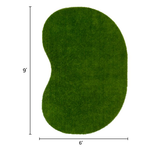 Greenspace Artificial Grass Area Rug 6  By 9  Jellybean