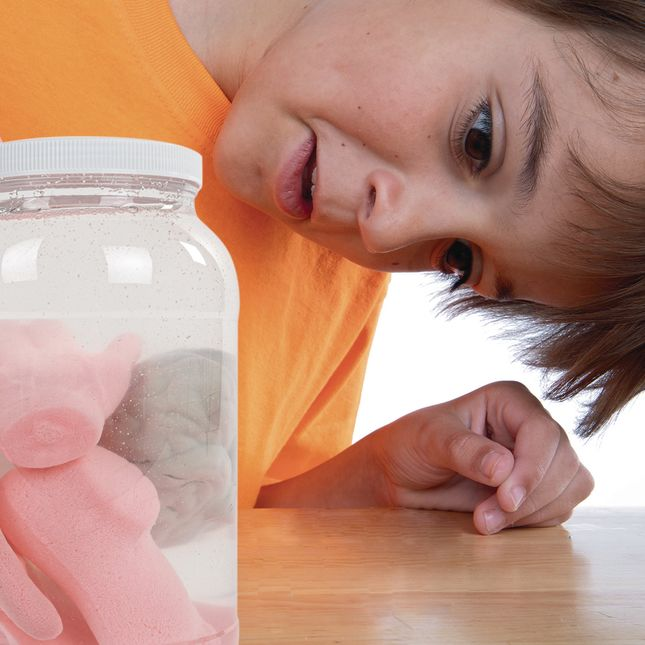 Growing Body Parts Jar