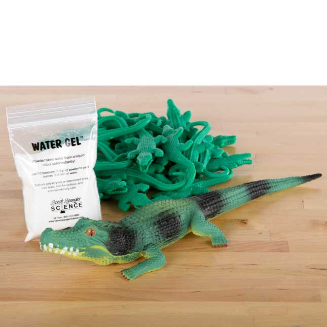StoryTime Science™ - Zack's Alligator Kit By Steve Spangler Science™