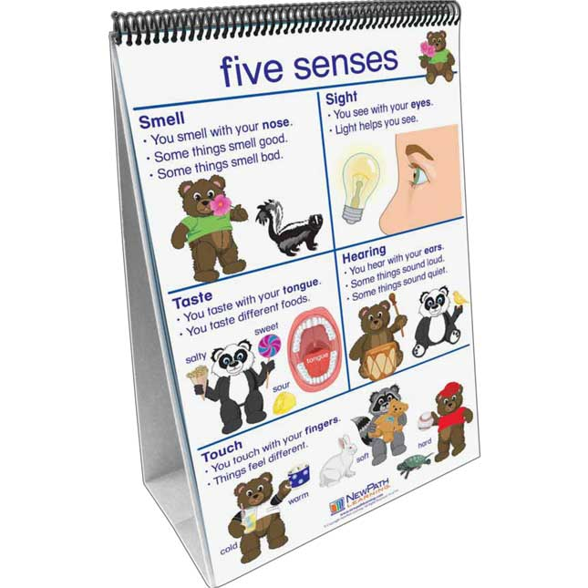All About Me Flip Charts - English