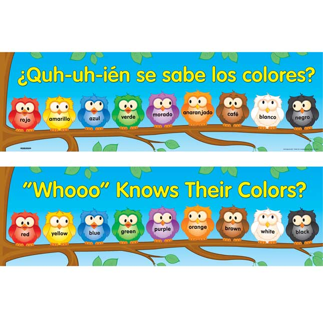 """Whooo"" Knows Their Colors? Banner - English-Spanish"