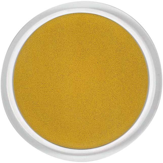 Ready2Learn™ Jumbo Washable Circular Gold Stamp Pad